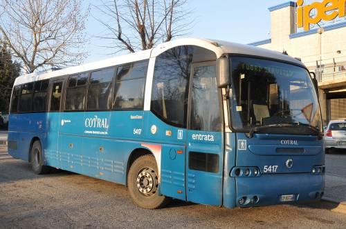 Rom di 15 anni schiaffeggia autista del bus