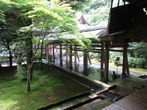 Ryoan-ji, l'enigma del giardino zen verso l'Illuminazione 5