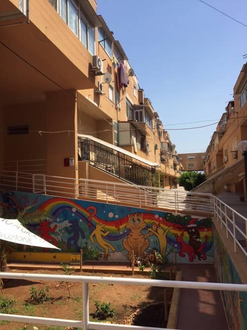 Palermo, il quartiere Zen 15