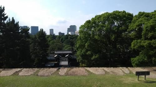 Torri, fossati e giardini: nel Palazzo Imperiale (che non c'è) a Tokyo