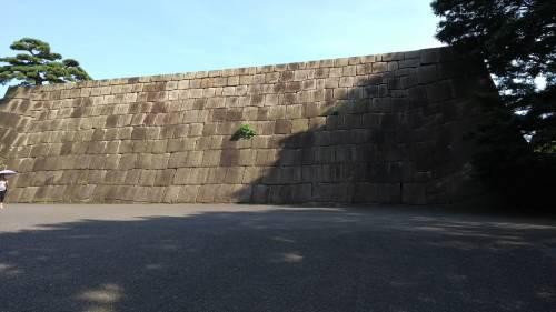 Torri, fossati e giardini eccezionali: nel Palazzo Imperiale a Tokyo 6