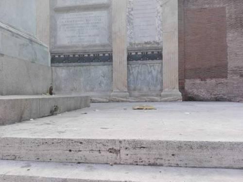 Roma, il degrado del quartiere Porta Pia 22