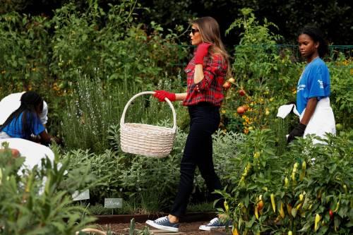 Melania Trump come Michelle: fa l'orto alla Casa Bianca 3