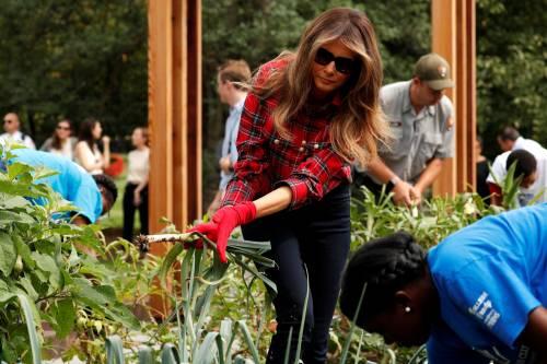 Melania Trump come Michelle: fa l'orto alla Casa Bianca 6