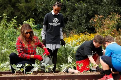 Melania Trump come Michelle: fa l'orto alla Casa Bianca 14