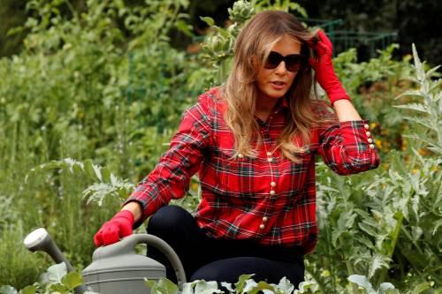 Melania Trump come Michelle: fa l'orto alla Casa Bianca 17