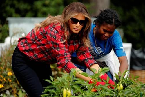 Melania Trump come Michelle: fa l'orto alla Casa Bianca 19