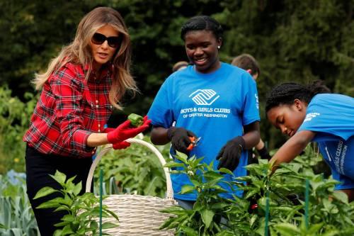 Melania Trump come Michelle: fa l'orto alla Casa Bianca 18