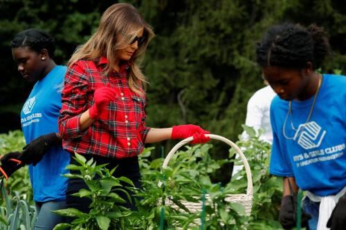 Melania Trump come Michelle: fa l'orto alla Casa Bianca 20