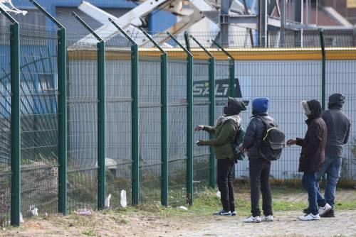 Nigeriano arrostisce un cane: banchetto choc al centro migranti