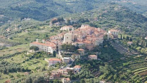 Liguria, dove l'olio è un elisir con la stessa dignità del vino