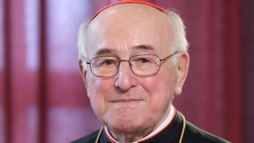 """Il cardinale sul documento pre Sinodo: """"eretico"""""""