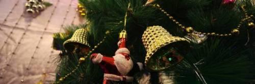 Bari, pizzo sull'albero di Natale in piazza