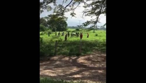 Venezuela, folla affamata uccide una mucca con pietre e bastoni