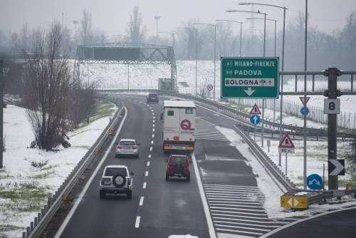 Perugia, orrore in superstrada: cuccioli lanciati da un'auto