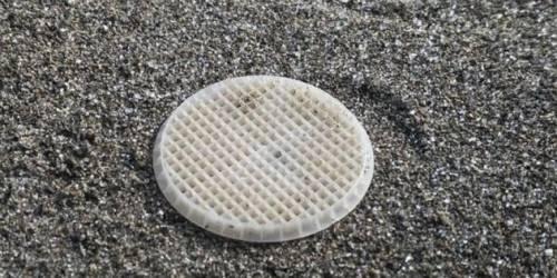 Svelato il mistero dei dischetti di plastica sulle spiagge
