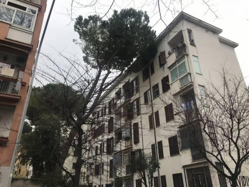 """Roma, le case Ater cadono a pezzi: """"Qui sembra di essere in guerra"""""""
