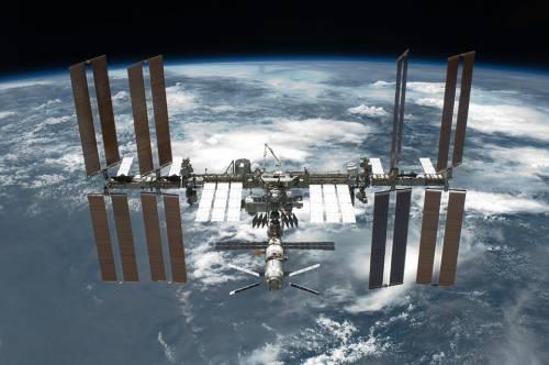 L'allarme della Nasa: Insetti spaziali erodono il rivestimento della Iss