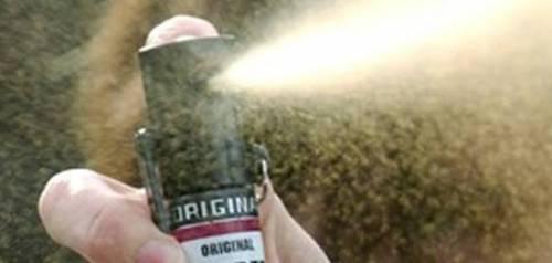 Niente spray al peperoncino a Capodanno. Ma la Raggi dice no: Salva le donne