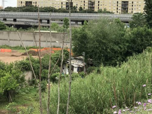 Nascosta dalla vegetazione, ecco la nuova favela rom di via Togliatti 4