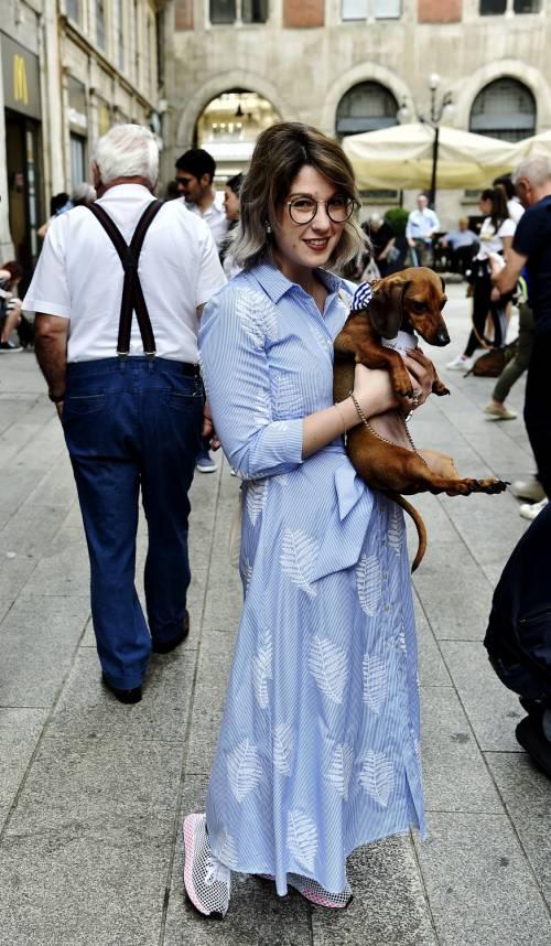 """La """"Sausage Walk"""" a Milano: sfilano i bassotti"""