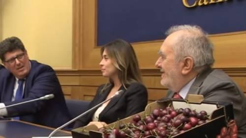 La nuova vita di Maria Elena Boschi: è 'sponsor' delle ciliegie pugliesi