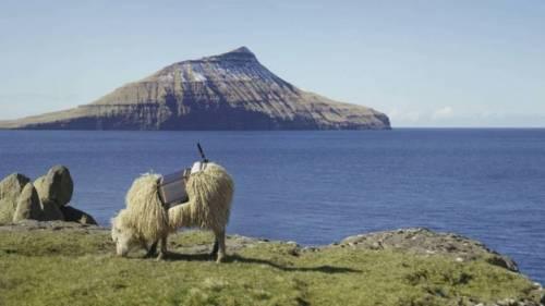 Le Isole Faroe vogliono l'indipendenza dalla Danimarca