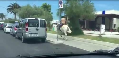 Un cavallo che corre sulla pista ciclabile? A Pescara si può