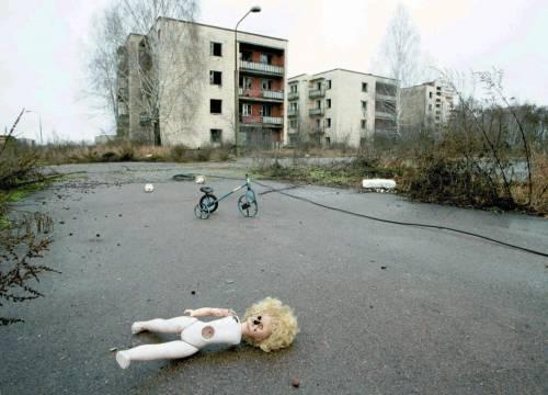 Da Chernobyl all'America: la nuova vita dei cani abbandonati