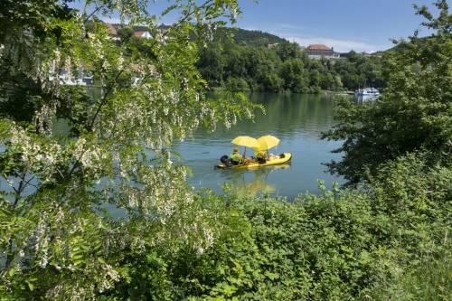 Dalla banana al pedalò: tutto si assicura in estate