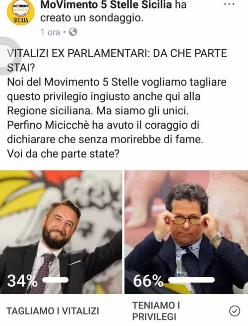 """Sondaggio del MoVimento 5 Stelle Sicilia, ma vincono """"i privilegi"""""""