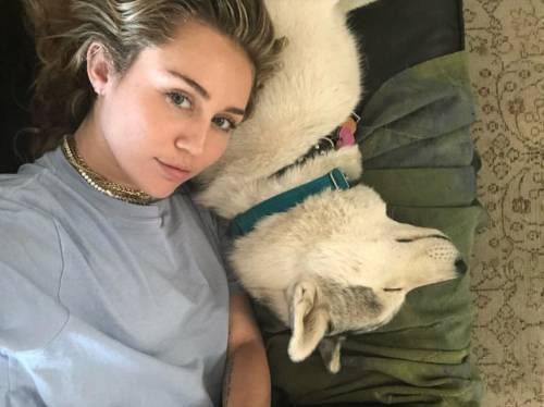 Miley Cyrus, le foto della cantante 4
