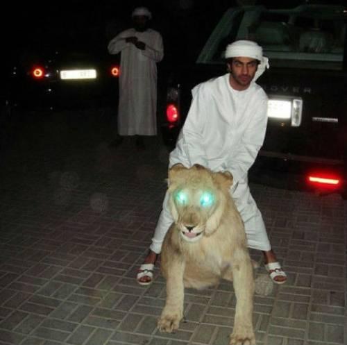 Rich Kids of Dubai, le immagini più belle 13