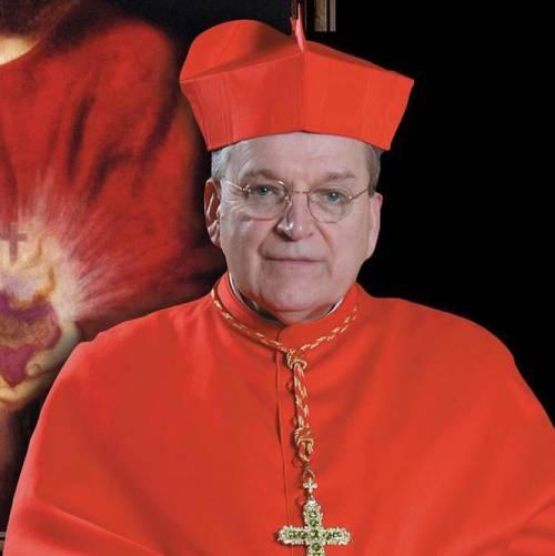 """Due cardinali attaccano """"l'agenda omosessuale"""" della Chiesa"""