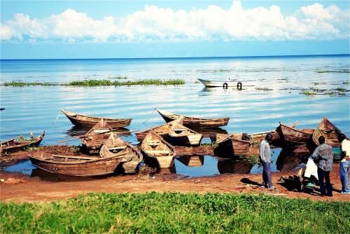 Lago Vittoria, si ribalta traghetto: si temono centinaia di morti