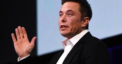 """Musk nei guai per il tweet  su Tesla privata La Sec: """"È frode"""""""