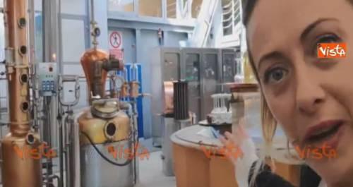 """Appello della Meloni dalla distilleria: """"Juncker, ti offro una grappa se..."""""""
