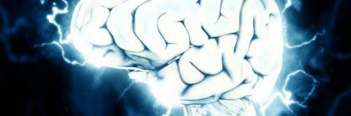 Una colonia di batteri abita il nostro cervello?