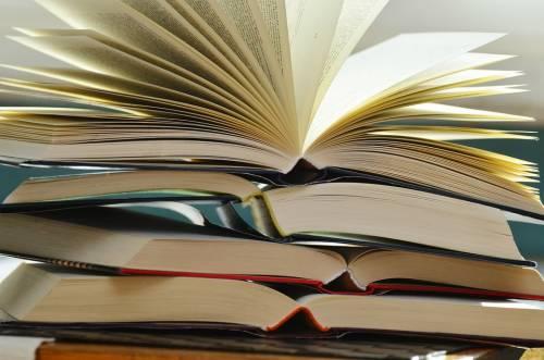 La quercia va abbattuta: costruita una libreria nel tronco