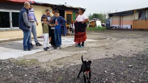 Nel campo rom senza acqua, senza bagni e colmo di rifiuti 16