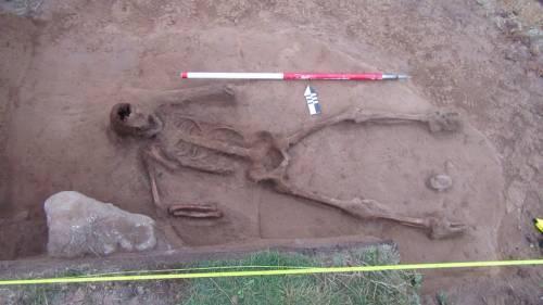 Gli scheletri di uomo e delfino. La doppia sepoltura è un giallo