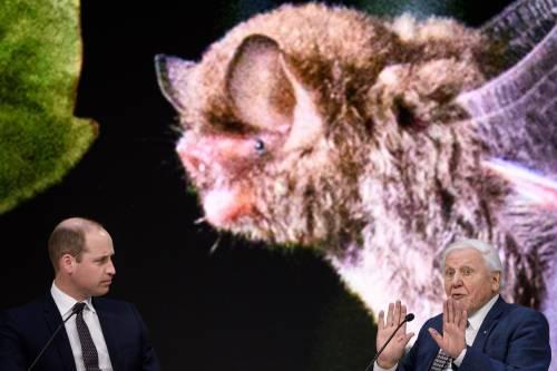Il Principe William al World Economic Forum 2