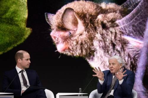 Il Principe William al World Economic Forum 10