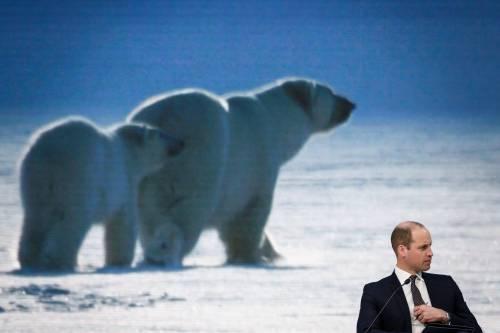 Il Principe William al World Economic Forum 7