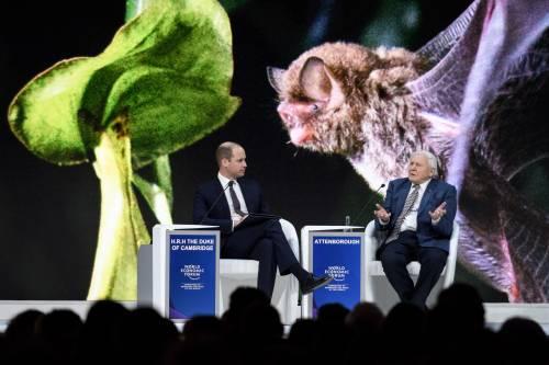 Il Principe William al World Economic Forum 13