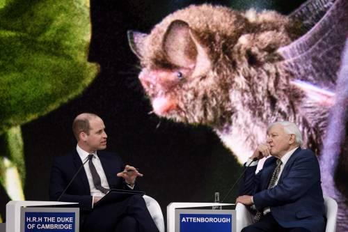 Il Principe William al World Economic Forum 4