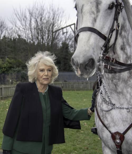 Camilla Parker Bowles, le foto della duchessa di Cornovaglia 9