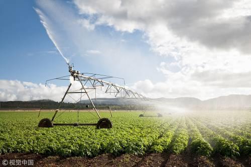 Cina e Italia: nuove opportunità cooperative nello sviluppo agricolo