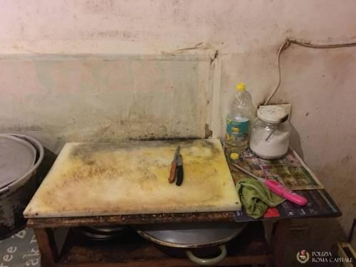 L'appartamento dei migranti tra muffa, blatte e odori cattivi 9