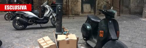 """""""Noi, ostaggio di degrado e topi nel centro antico di Napoli"""""""
